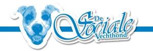 dsv_Parabola_Dia_Logo