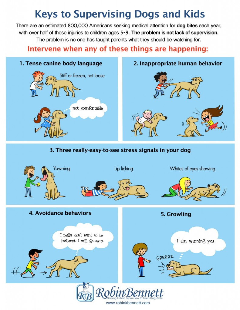 dsv_Kleine mens en hond_Keys to Supervising Dogs and Kids