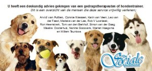 dsv_Deskundig-advies12-9-2014