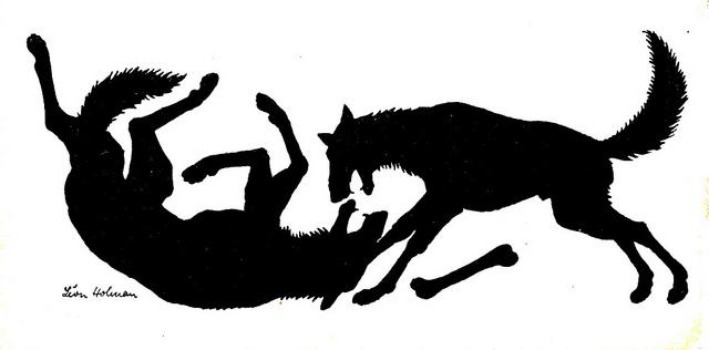 angst agressie bij honden