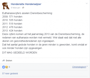 euthanasie dierenasiels 18.17.55